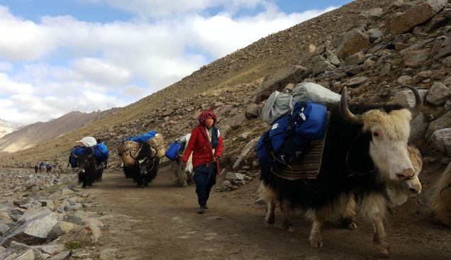 Mount Kailash Trek Day2b