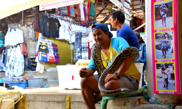 damnoen-saduak-floating-market-photo-snake-large