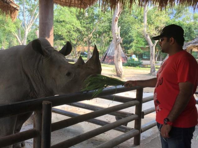 khao-kheow-open-safari-park-large