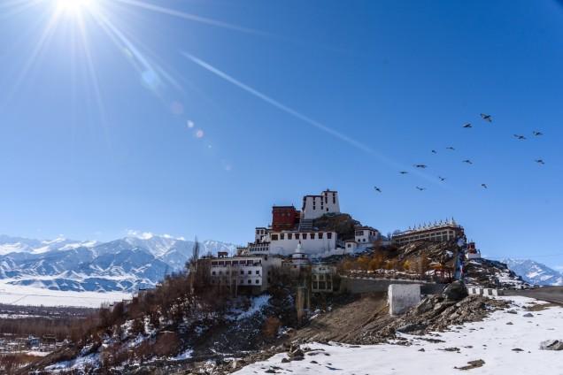 11-Leh-Ladakh--Shey-Palace-Shey-Monastery