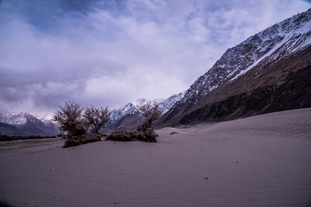 27-Leh-Ladakh-Nubra-Valley