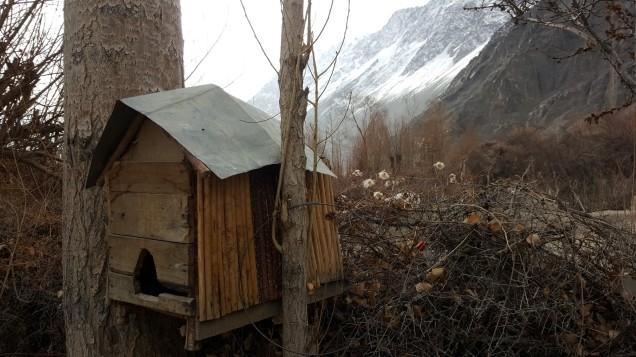 30-Leh-Ladakh-Nubra-Valley-Home-Stay