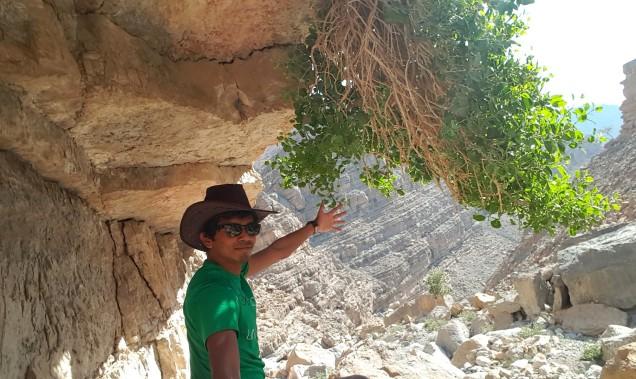 10-Wadi-Shah-Trail-Valley