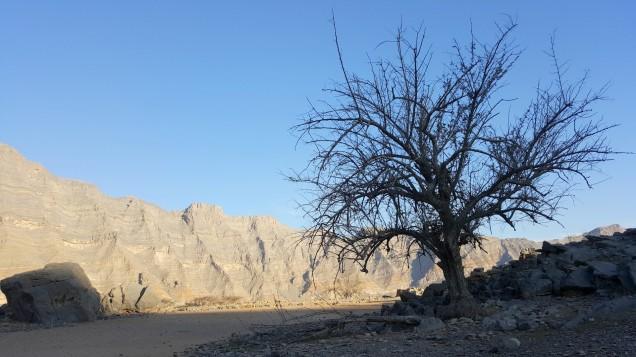 19-Wadi-Shah-Trail-Ground