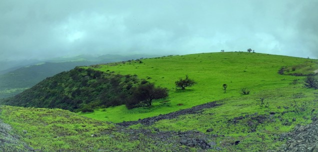 01-Salalah-Welcomes-You
