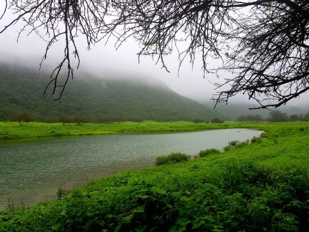 10-Salalah-Wadi-Darbat